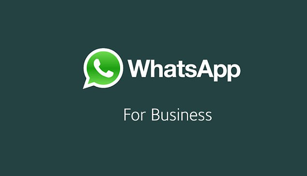 Whatsapp business for Proideators Digital marketing Institute - Proideators Digital Marketing Course Training Institute
