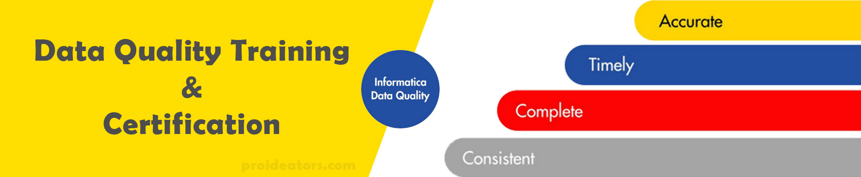 Informatica Data Quality Training and Certification