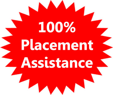 100% placement assistance Proideators