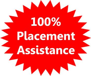 100% placement assistance Proideators
