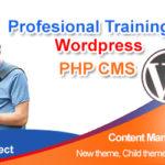 Wordpress training website development courses institute