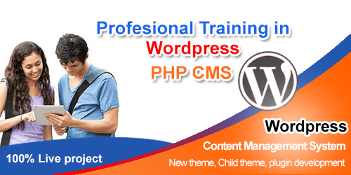 Wordpress training website development courses institute